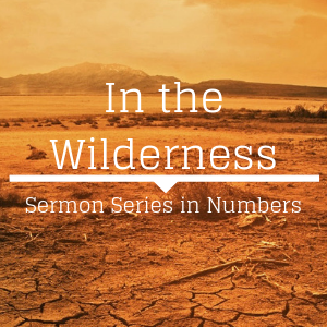 In the Wilderness: The Book of Numbers